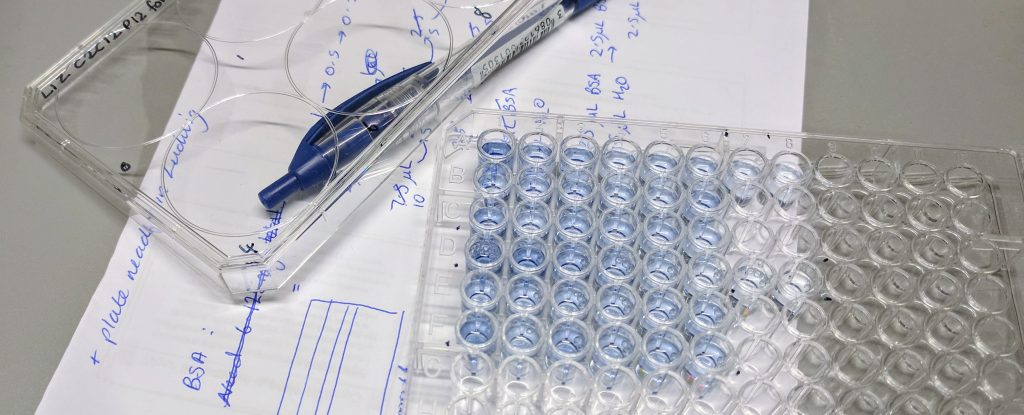 An image of a 96 well plate, a pen, and some paper on a lab bench.